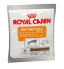 royal-canin-energy-godbid